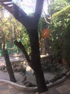 6 de 18: Cascada vista desde el comedor