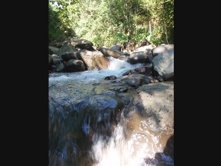 26 de 27: Cortezal River