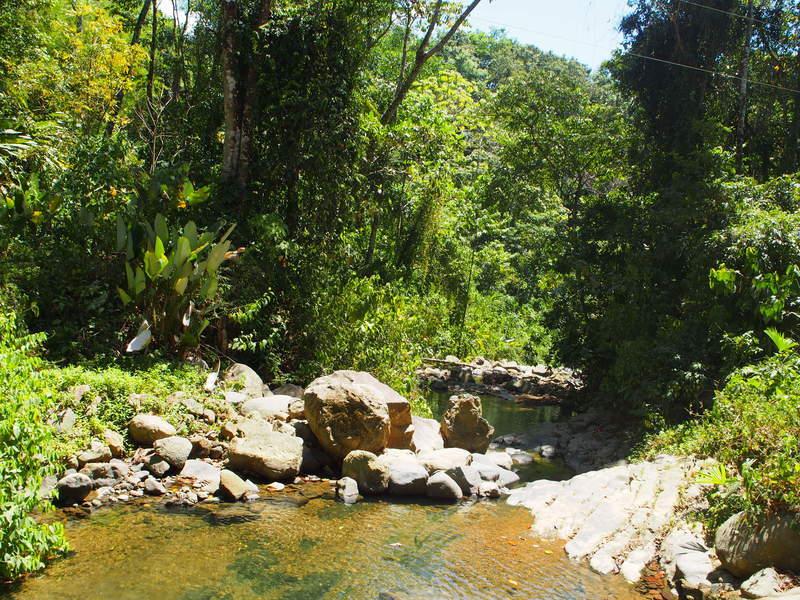 4 de 27: Coretezal River border