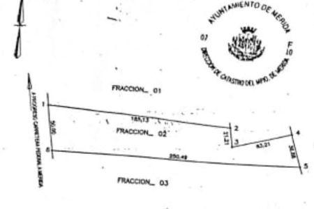 Medium eb cz3462