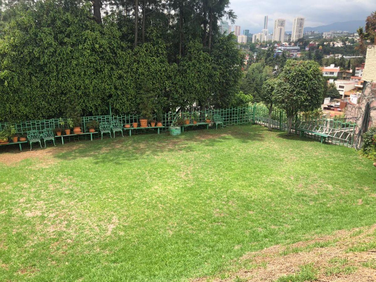 6 de 13: Jardin