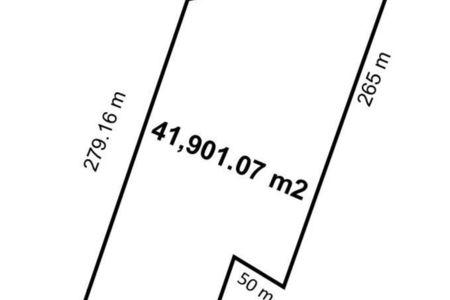 Medium eb cz9906