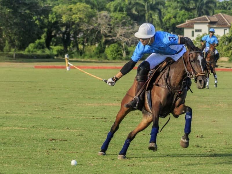 18 de 39: Equestrian & Polo