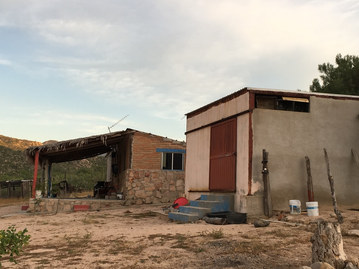 7 de 22: bodega y casa para vaquero