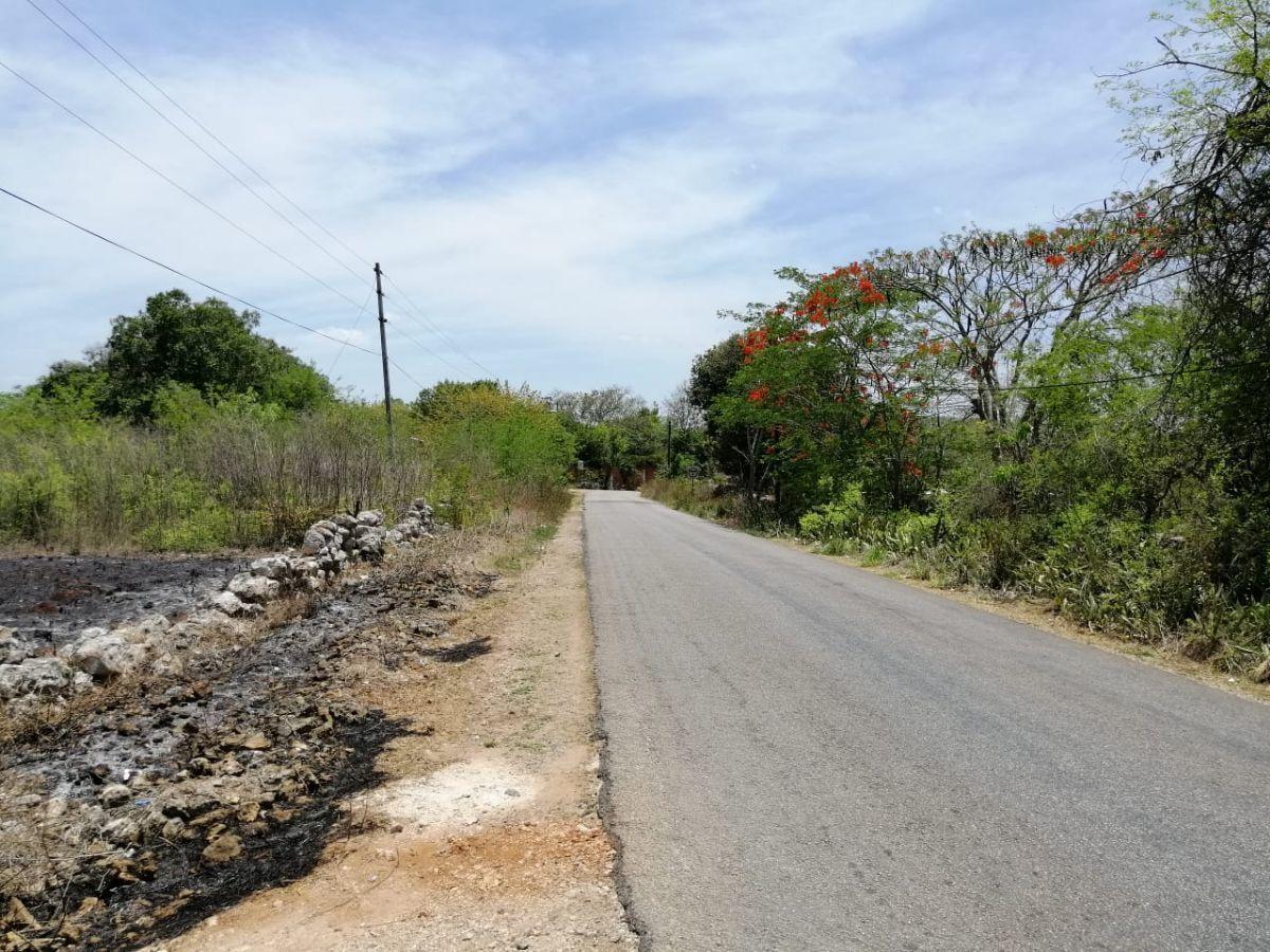 3 de 14: carretera canicab-acanceh