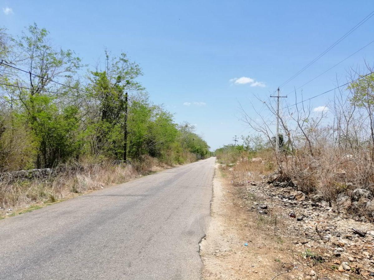 2 de 14: carretera canicab-acanceh