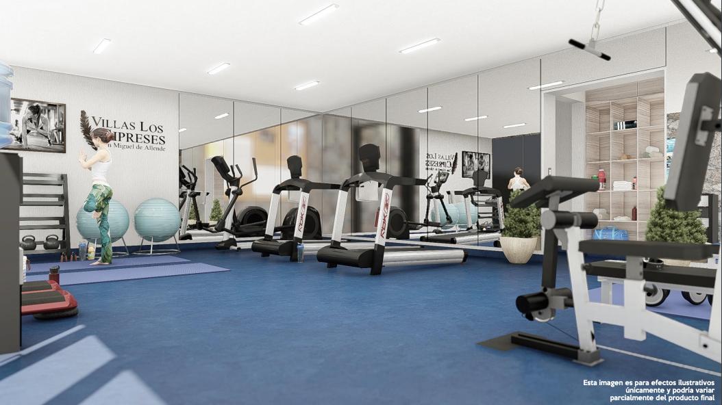 15 de 15: Fitness Studio