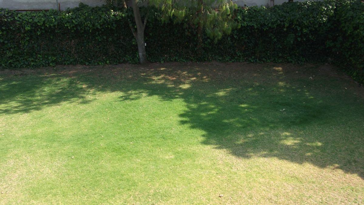25 de 28: Jardín