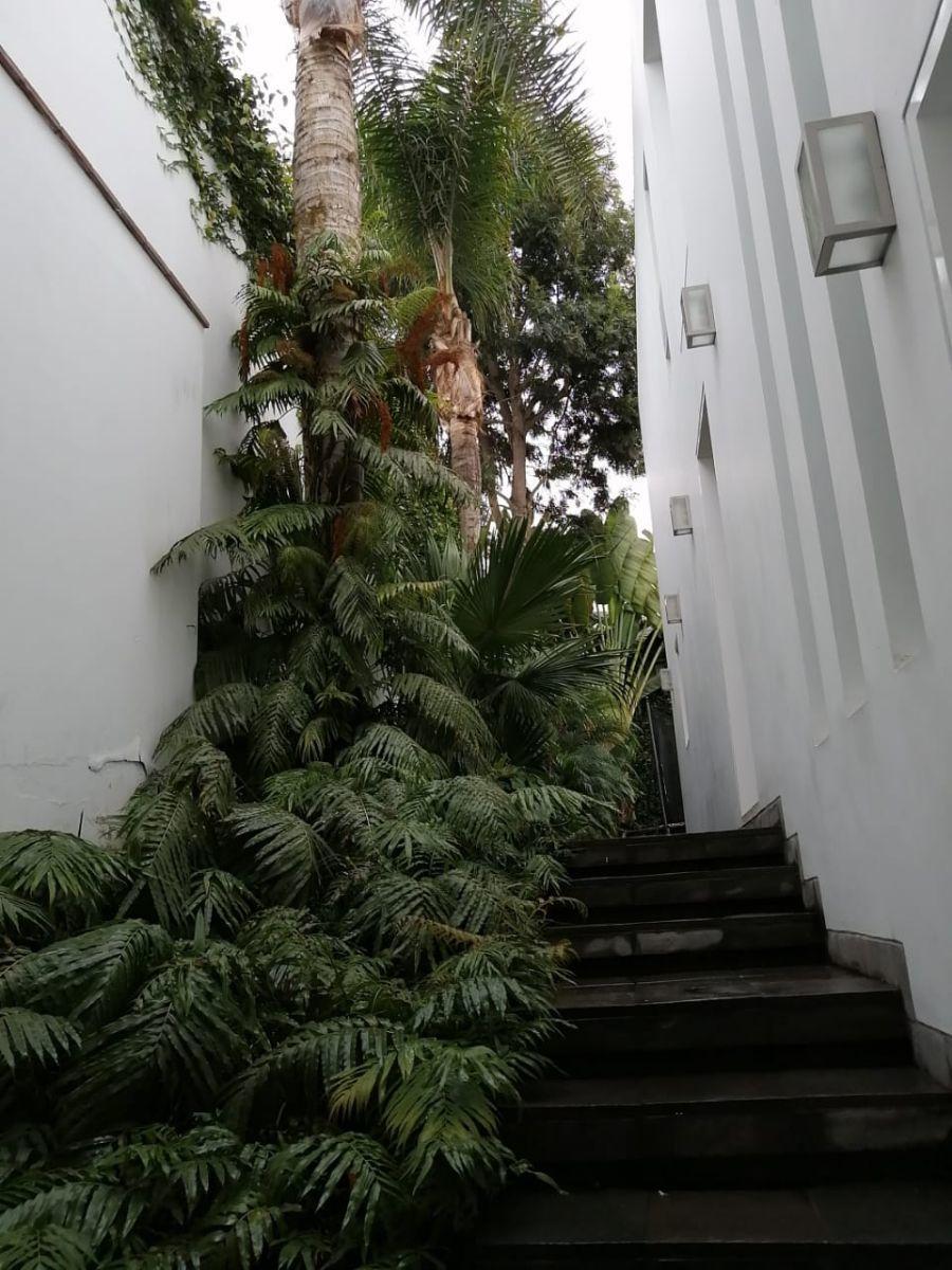 39 de 42: Vista desde sala de juegos del primer nivel hacia el jardín
