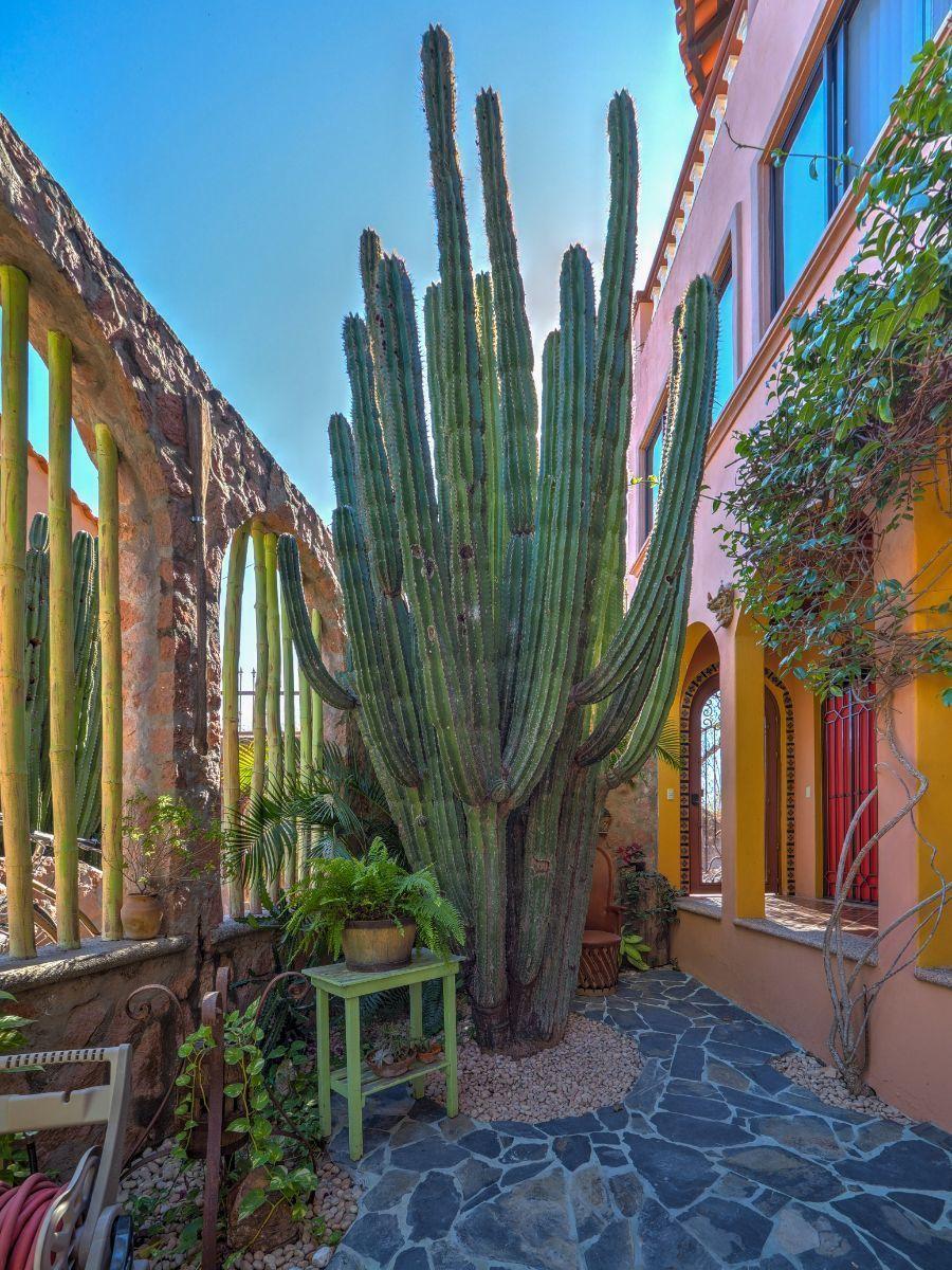 12 de 50: Villa Vista Royal La Cruz Huanacaxtle NUHome Realty