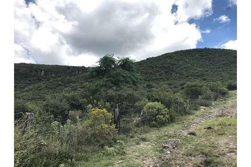 5 of 6: Vista de parte de la montaña.