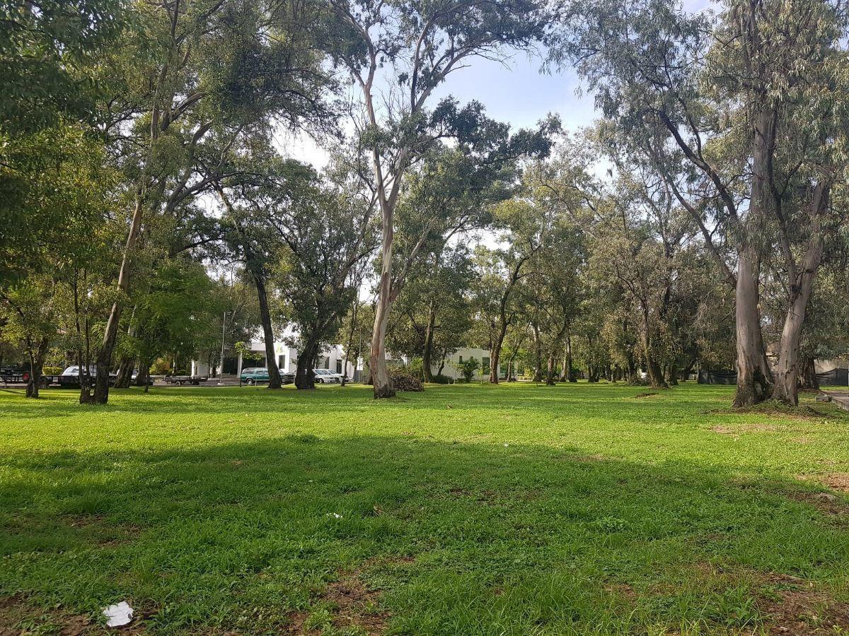 1 de 13: Bosque 2 hectáreas de Bosque dentro del Condominio