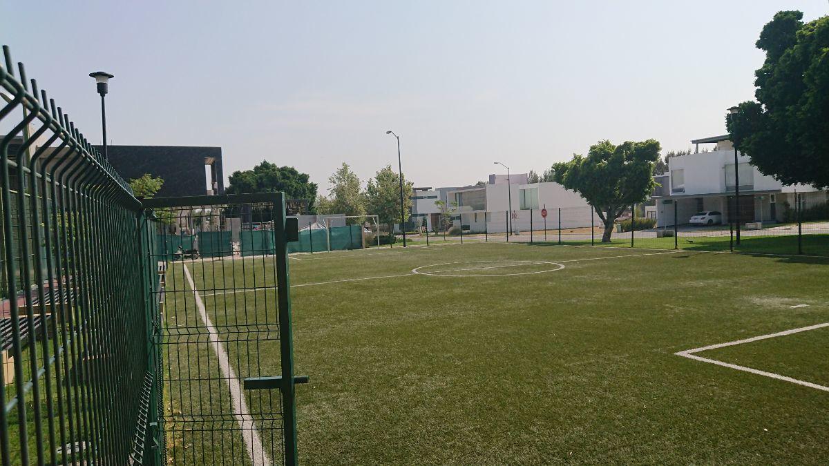 30 de 36: Chancha fútbol 7