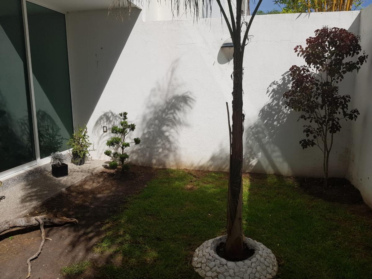 20 de 39: Jardín