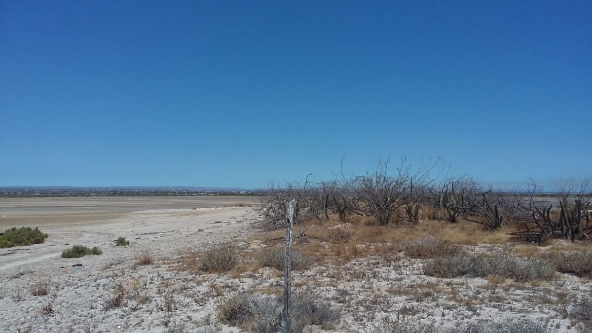 8 de 13: Lot for sale in baja