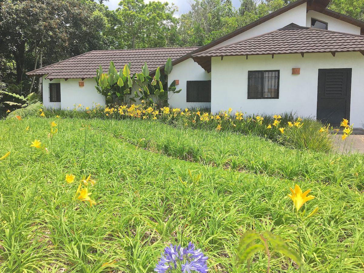 3 de 36: Jardines en excelentes condiciones