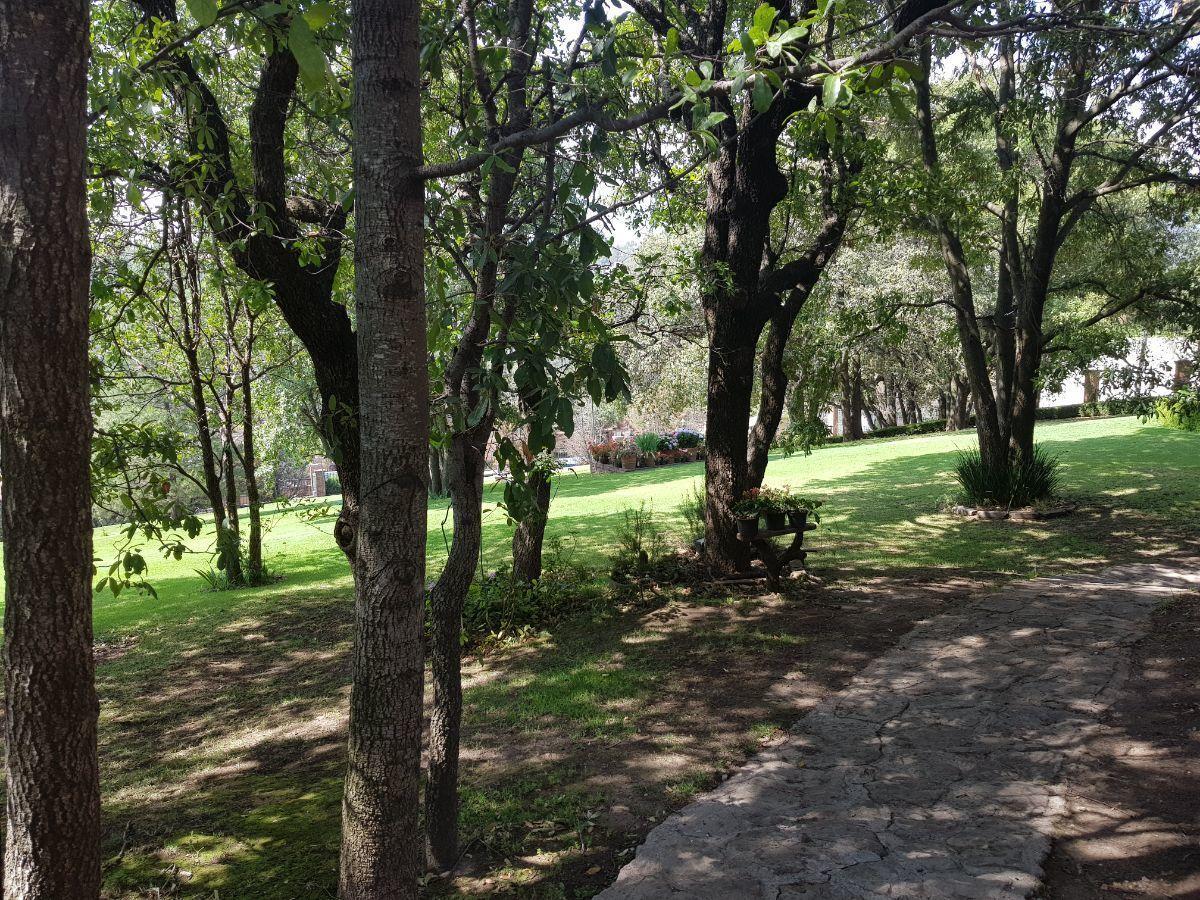 47 de 48: Jardín