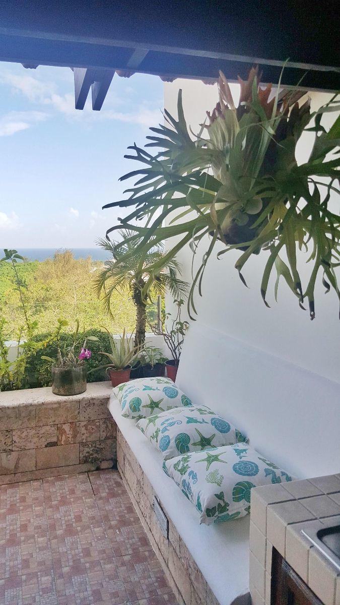 19 de 23: Detalle en la terraza