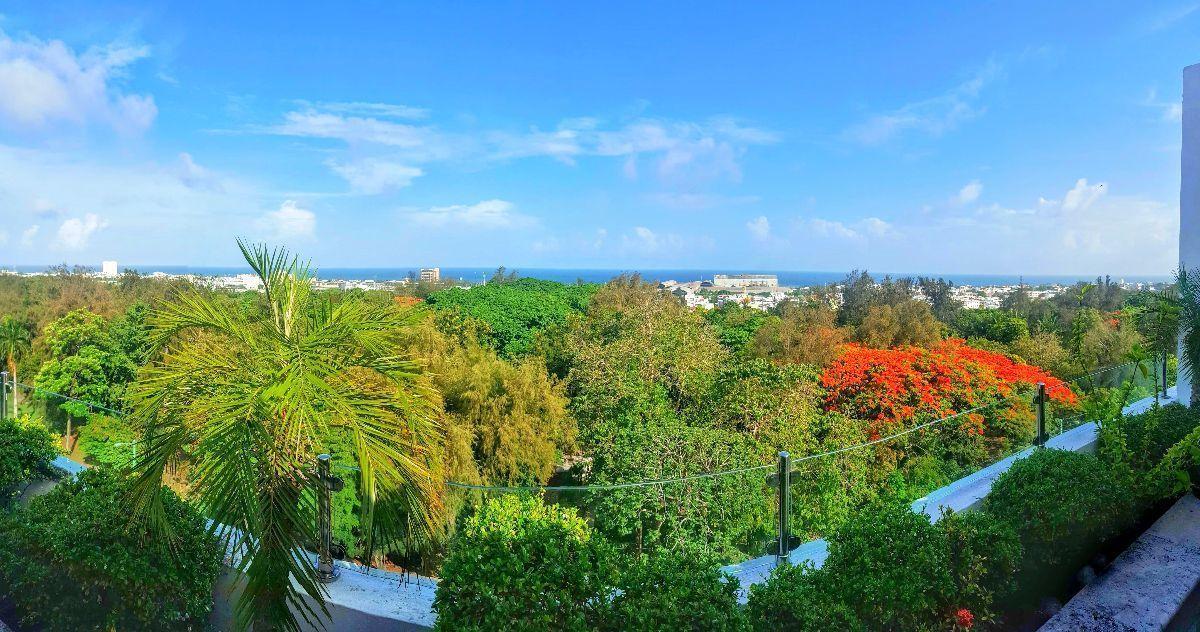 2 de 23: Vista del Parque Mirador Sur desde La Terraza