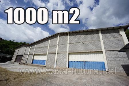 Medium 115693