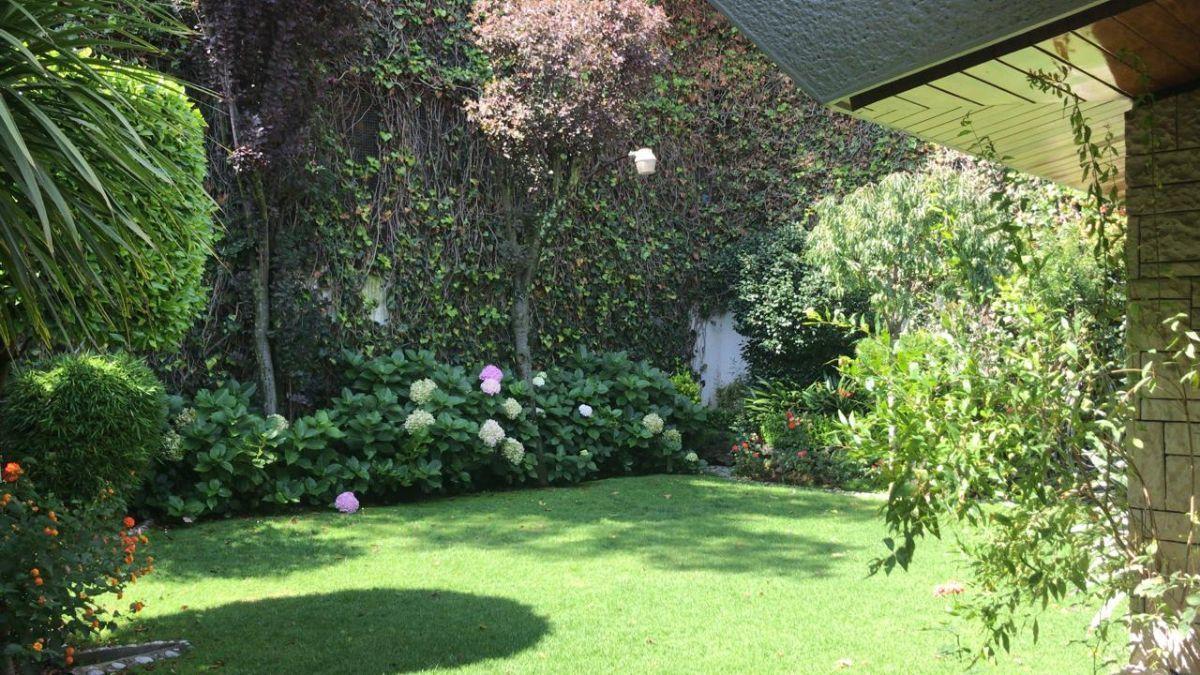 2 de 18: Jardin