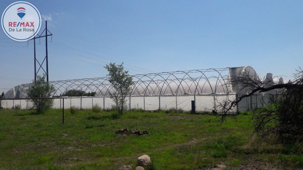 11 de 15: Estructura invernadero de 5000 aprox