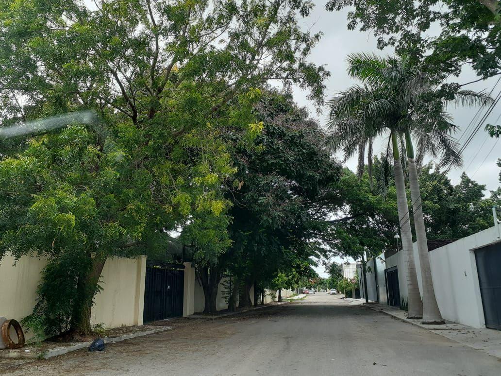 2 de 24: Calle de acceso