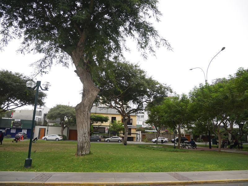 12 de 39: Exclusivo Parque Melitón Porras