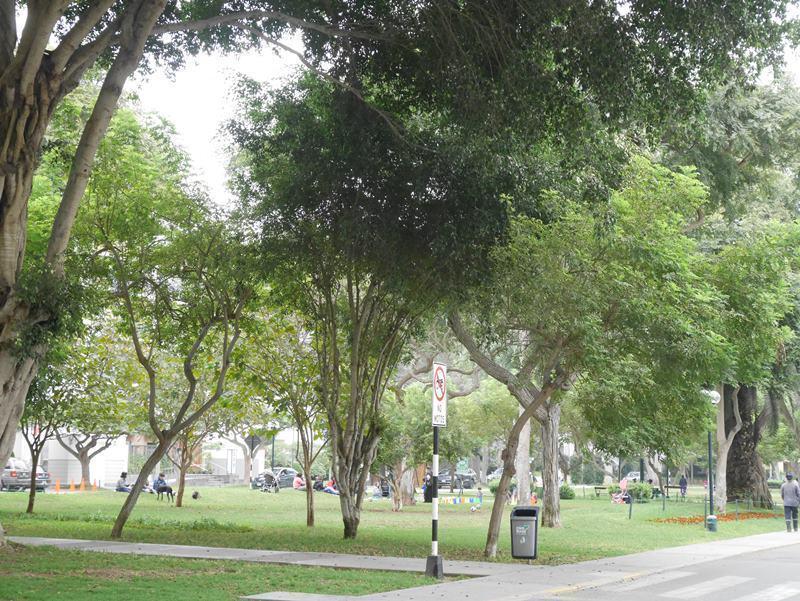 13 de 39: Exclusivo Parque Melitón Porras