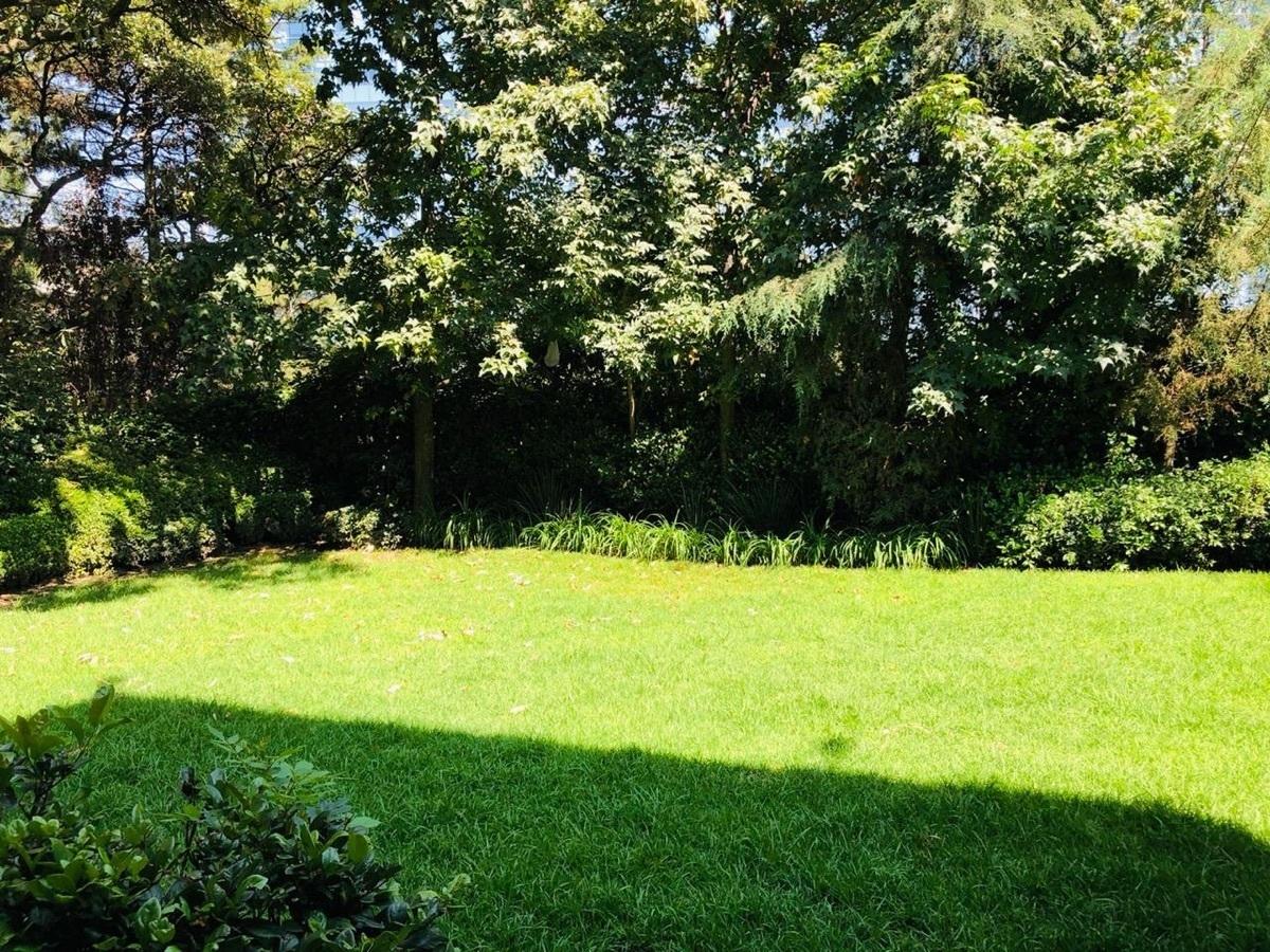 29 de 39: Jardin