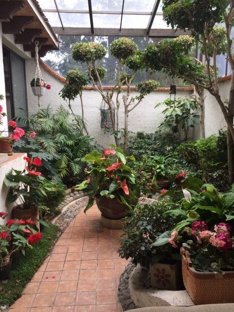 3 de 13: Jardín Interior