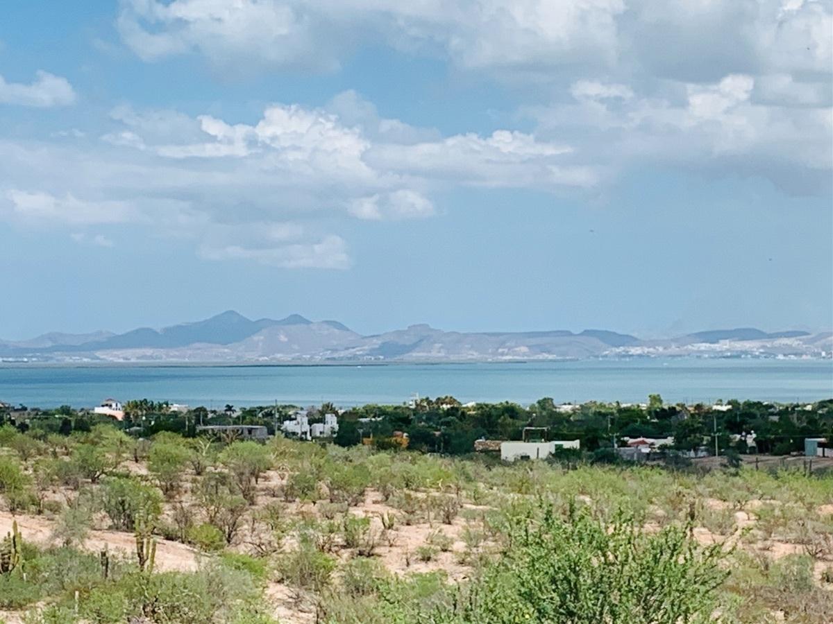 28 de 44: Vista desde terraza