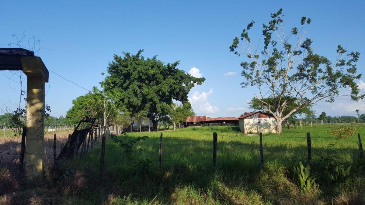 Terreno de 1845 tareas ubicada en  Villa Rivasimage6