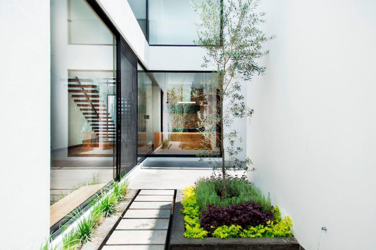 6 of 14: Vista jardin interior