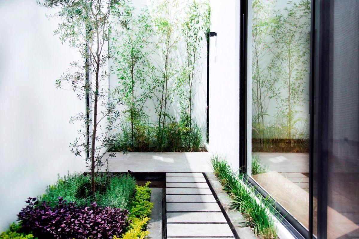 7 of 14: Vista jardin interior