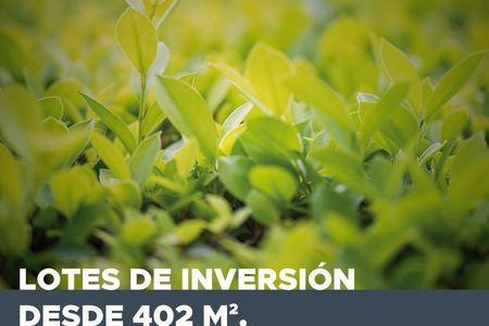 Medium eb dv8538