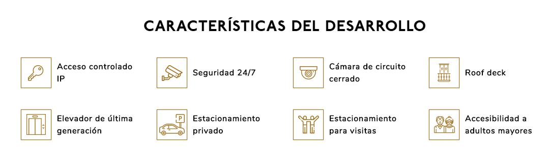 17 de 17: Características del desarrollo