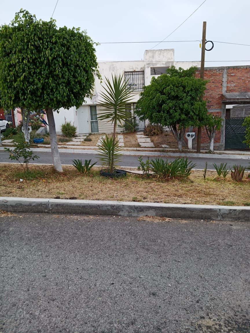 17 de 18: Entorno  calle