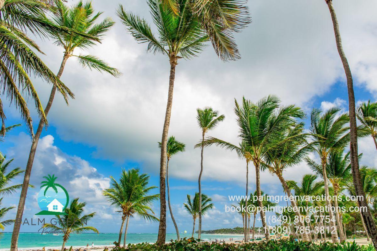 20 de 21: Vacation rental punta cana
