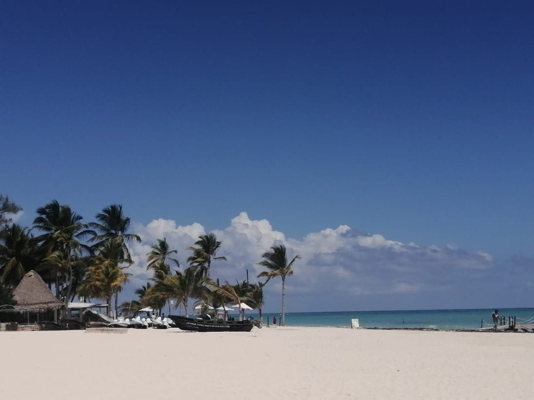 32 de 45: Vacation Rental Punta cana Stanza Mare 2 bedrroms PALMGREENV