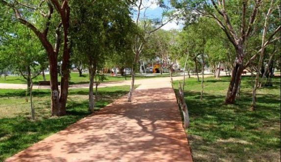 5 de 6: Parque Cercano a la casa