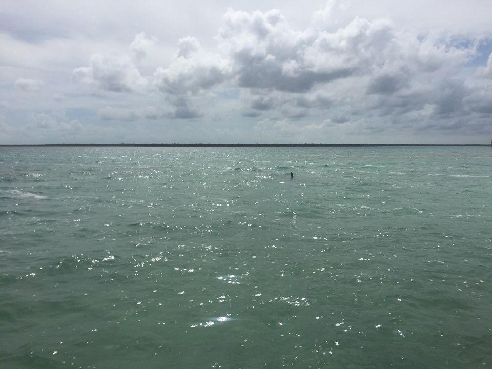 12 de 14: Laguna