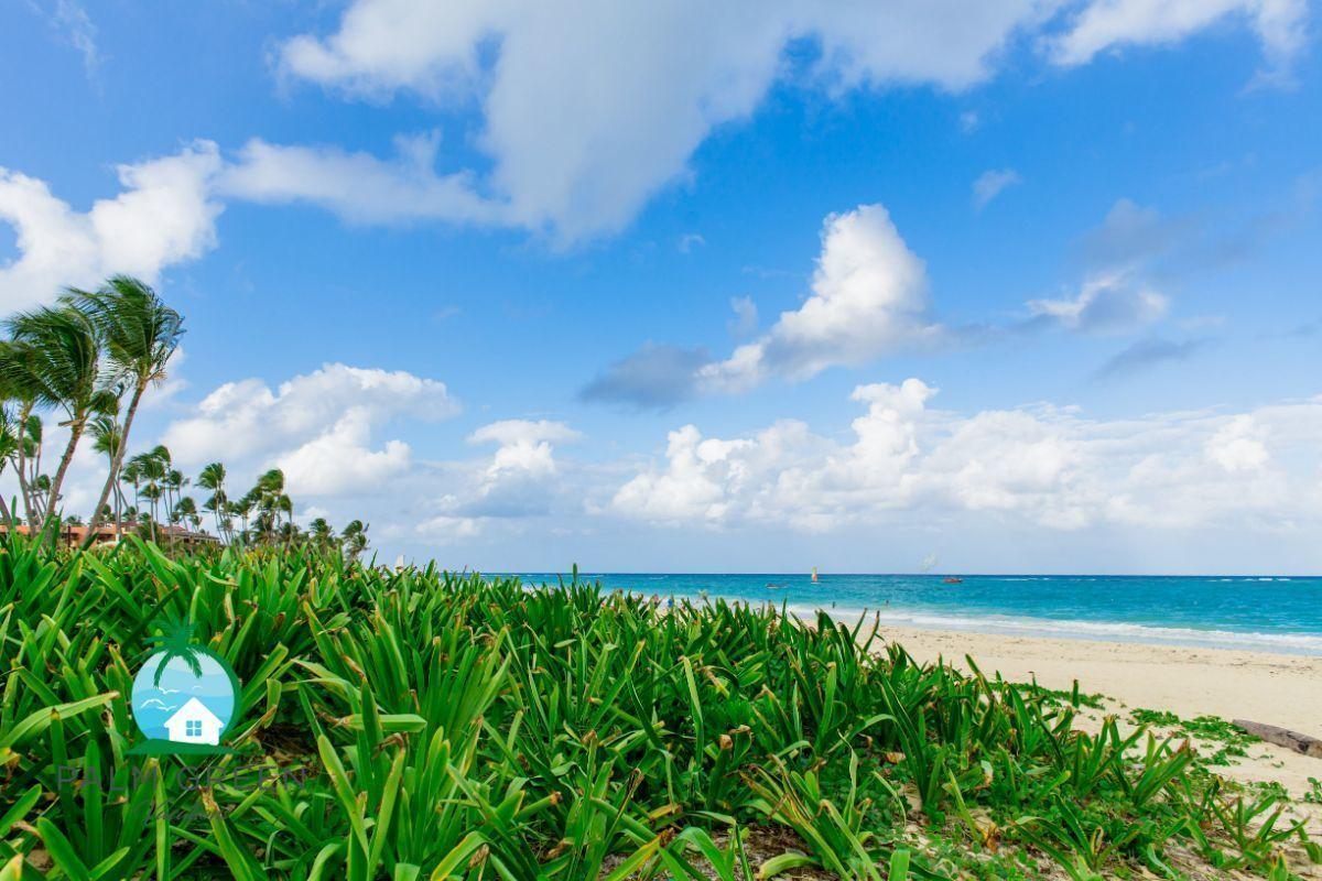 34 de 34: Vacation rental punta cana whitesands