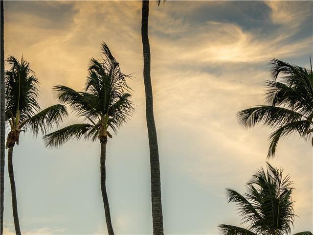 11 de 50: Villa ocean Front  dormitorios vacaciones de grupo punta can