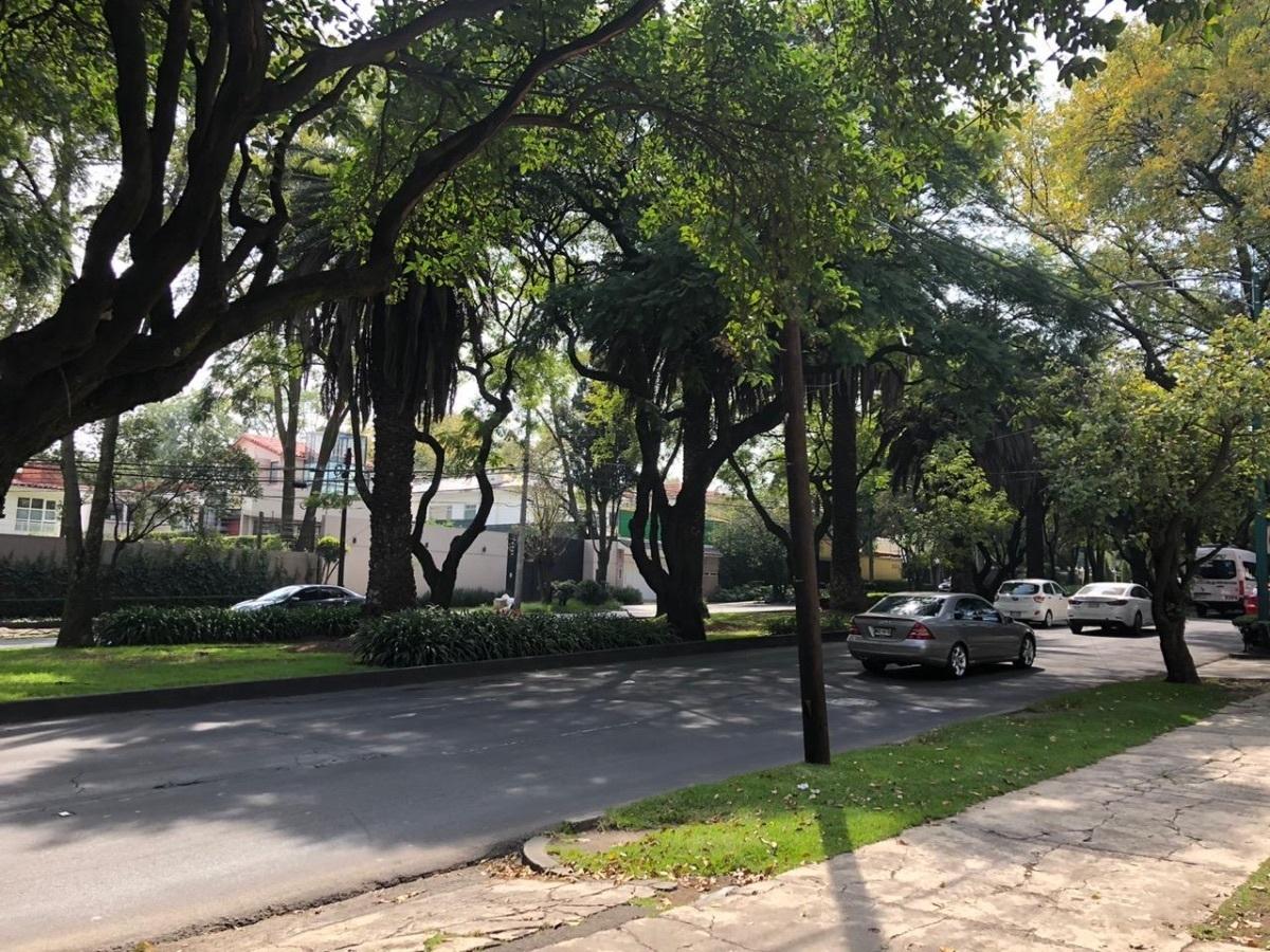 3 de 9: Calle principal