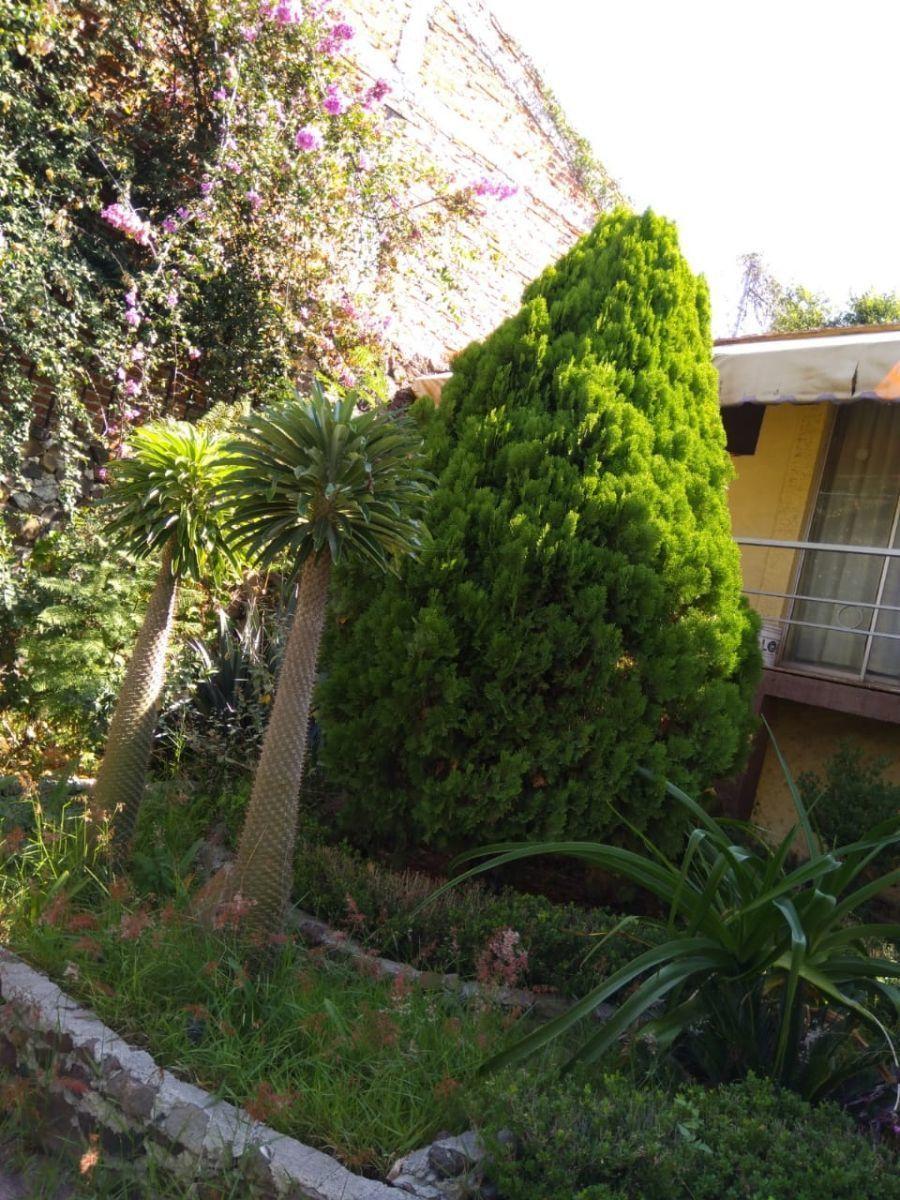 10 de 21: Jardin y Vista al Bungalow