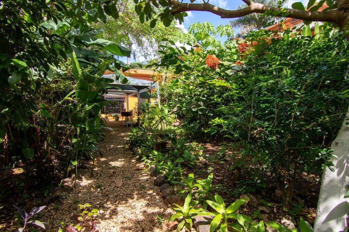 7 of 8: Garden area