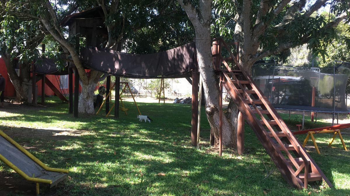 1 de 4: jardín con casa del árbol y pozo