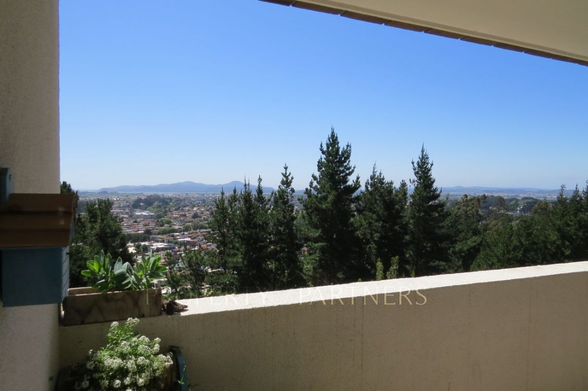 3 de 14: Vista terraza principal