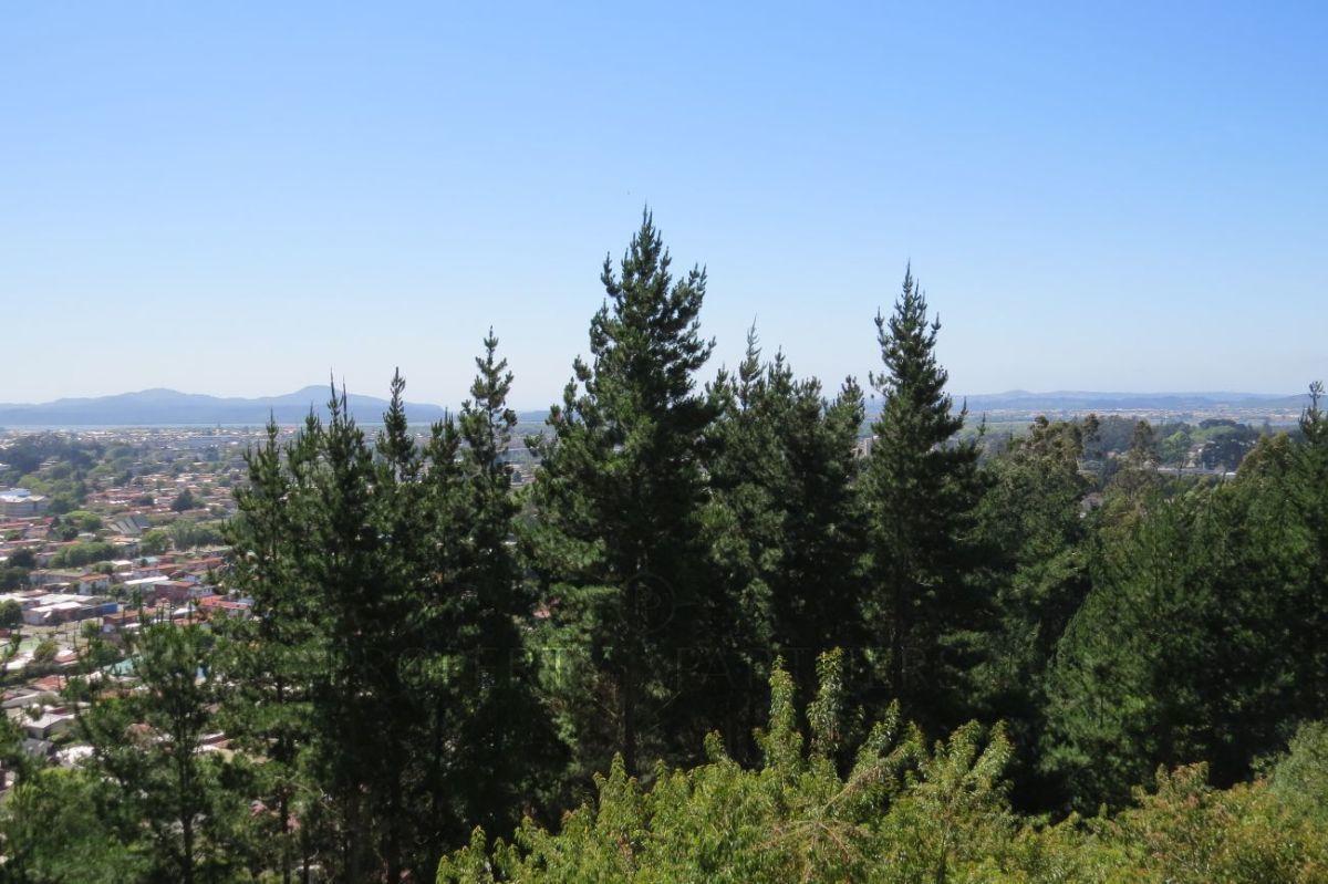 10 de 14: Vista desde la terraza